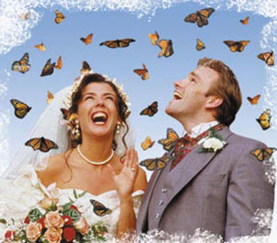 weddingstylist butterflies5 Πεταλούδες...θέμα γάμου