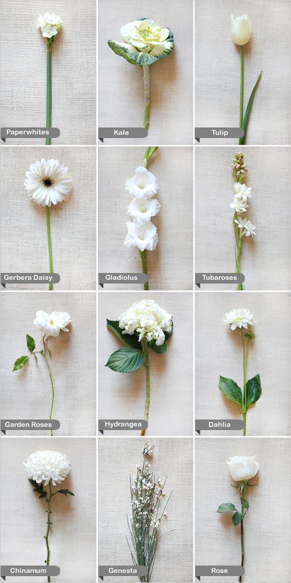 weddingstylist white Άσπρα λουλούδια στον γάμο σας