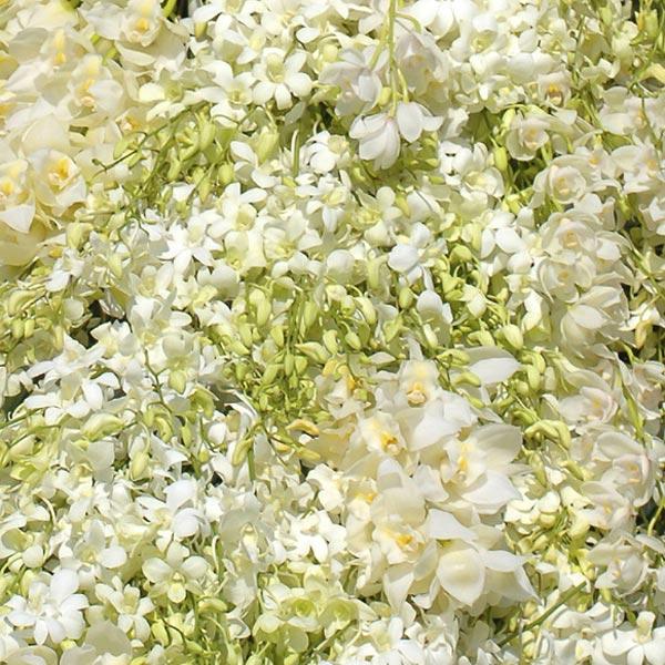 weddingstylist whiteflower1 Άσπρα λουλούδια στον γάμο σας