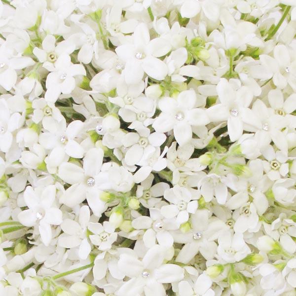 weddingstylist whiteflower2 Άσπρα λουλούδια στον γάμο σας