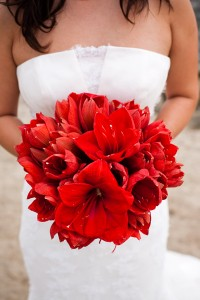weddingstylist_amaryllis_bouquet