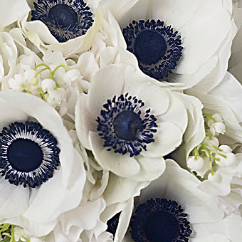 weddingstylist_anemones